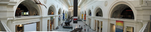 Field Museum in Chicago, IL. Looking south from second floor