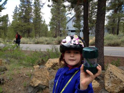 Tweet: We found the geocache that we couldn't find last y…