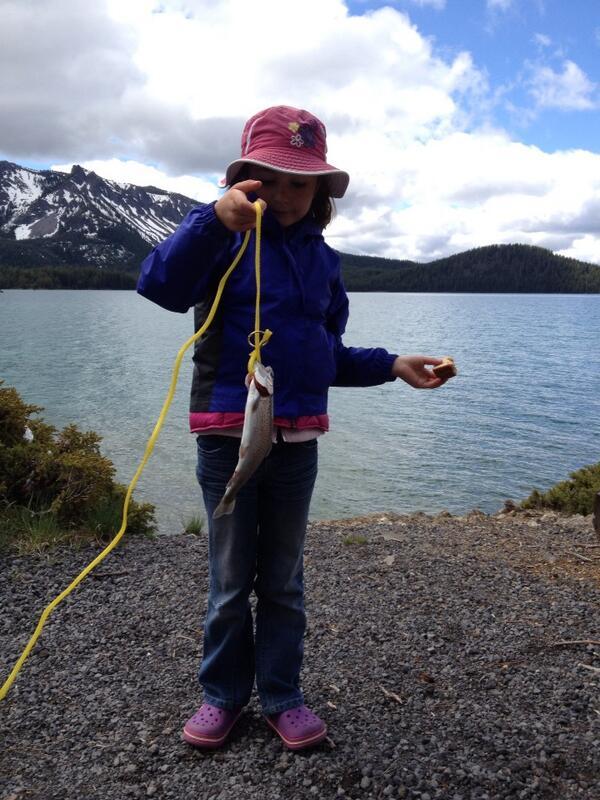 Tweet: Bug pulls a nice rainbow trout from Paulina lake….